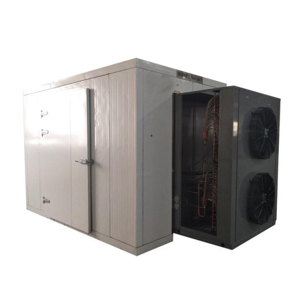 High Quality Fruit and Vegetable Washing and Drying Machine #1 image