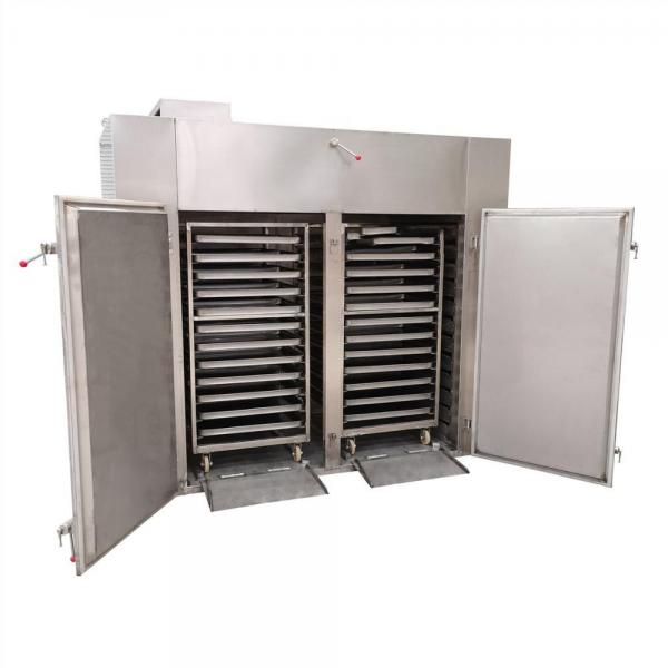 Fruit Circulating Hot Air Tray Dryer #1 image