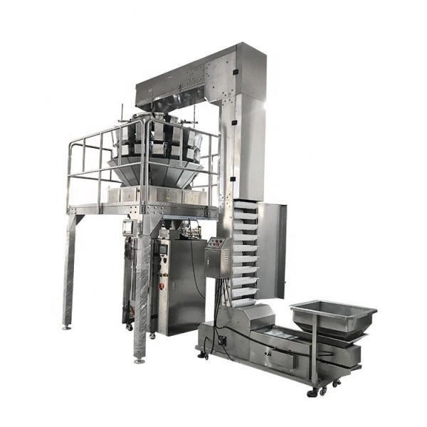 High Speed Automatic Weighing and Packaging Chips Snack Food Pouch Packing Machine Price #1 image